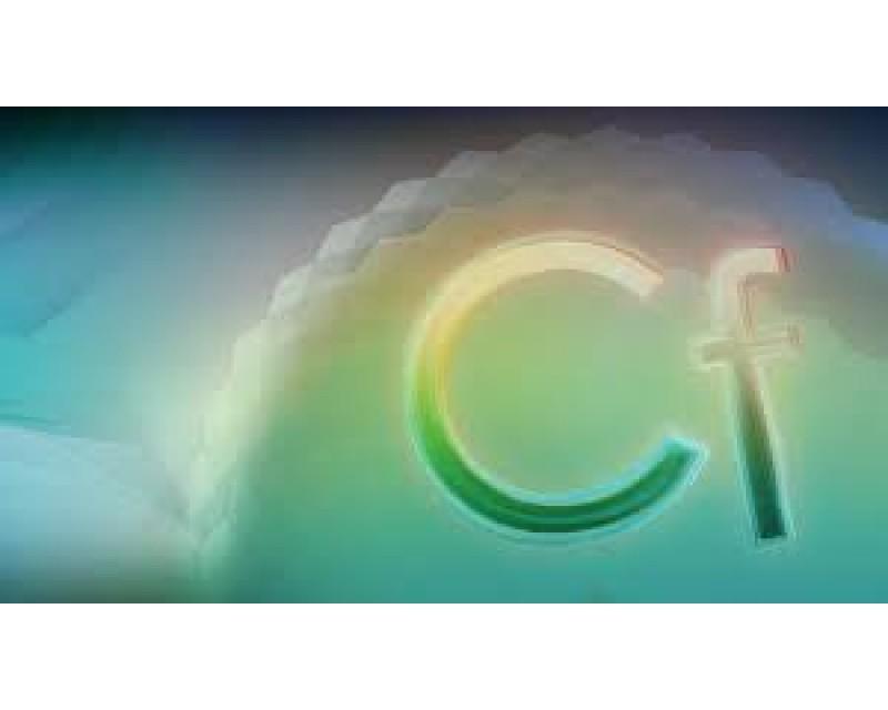 Adobe ColdFusion 11 Standard