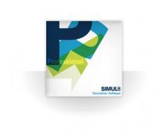 Simul8 Professional